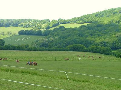 Centre Equestre Poney-Club de Prunevaux 58 Nievre Bourgogne
