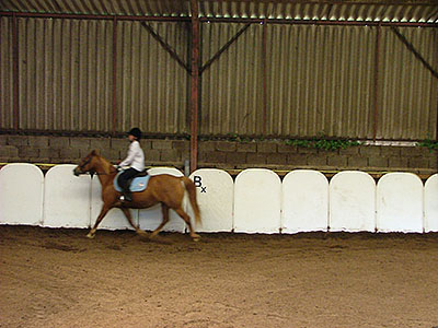 Centre Equestre Poney-club Prunevaux